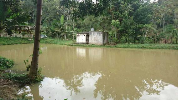Sete Barras / Sitio P/ Gado/ Asa/lago/nascente/ Ref :04896