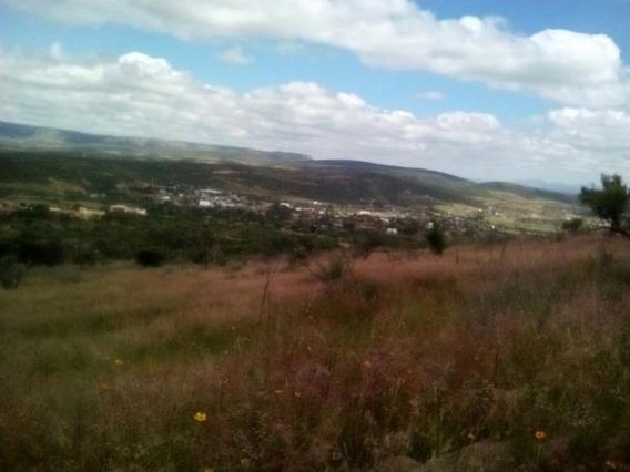 Venta Hectáreas Terreno En Lomas Del Picacho En Aguascalientes