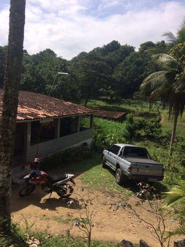 Imagem 1 de 20 de Fazenda-granja-sítio 5,5 Hectares C/riacho Perene Na Guabiraba, Aceito Automóvel - Ch00003 - 67694332