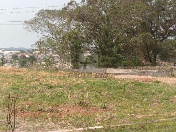 Terreno Industrial - Ipelandia - Ref: 4080 - L-4080