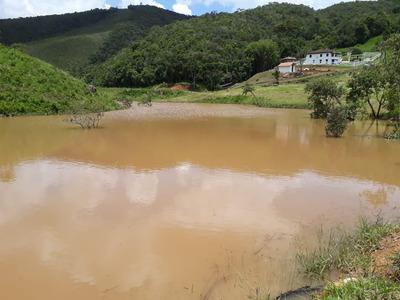 Fazenda No Sul De Minas , Com 40 Hectares , Cidade De Liberdade ,muita Água , Lago , Perfil Gado ,oliveira , Peixe. - 4552