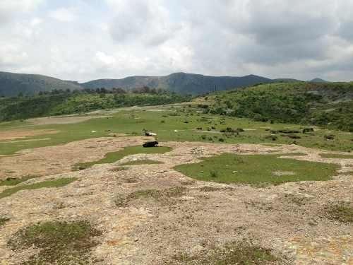 Terreno En Venta En Guanajuato. 800 Hectáreas.