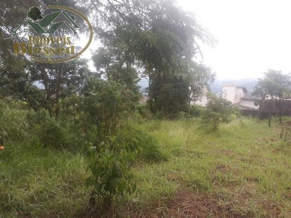 Terreno Para Venda Em Atibaia, Jardim Dos Pinheiros - 0059_1-1085517