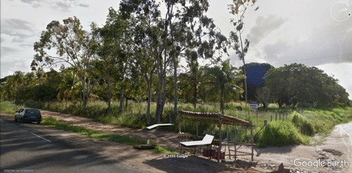 Área À Venda, 22228 M² Por R$ 800.000,00 - Monte Alegre - São José De Mipibu/rn - Ar0001