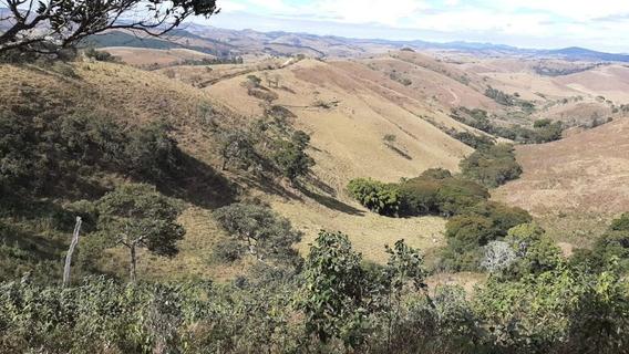 Sítio Em Carvalhos , Sul De Minas, Com 26 Hectares, 2,5 Klm Do Asfalto , Ótima Topografia . - 805