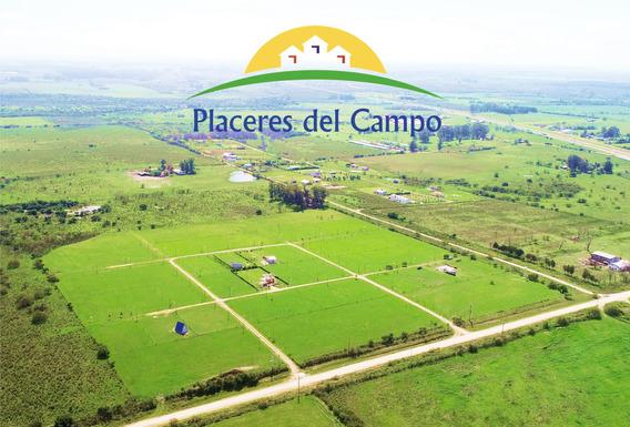 Emprendimiento Placeres Del Campo