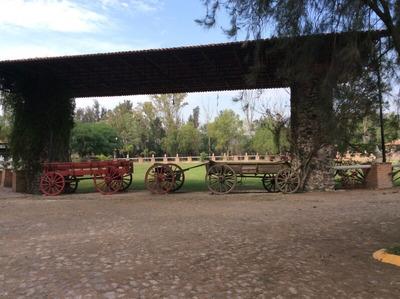 En Rancho La Pitaya
