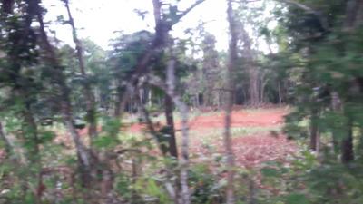 Terreno En Colón, Limón 17 Héctareas