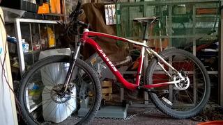 Bicicleta James Durango
