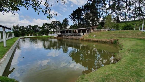 Chácara Em Caucaia Do Alto, Cotia/sp De 600m² 2 Quartos À Venda Por R$ 1.430.000,00 - Ch372922