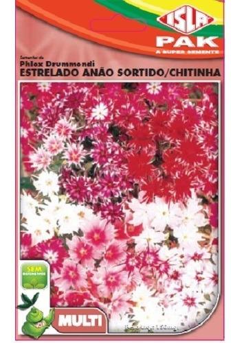 Semente Isla Multi Flores Phlox Drumondi Sortido
