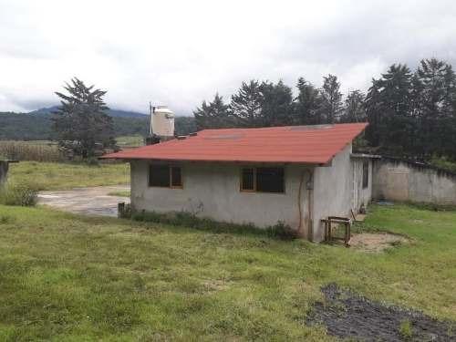 Casa Sola En Renta San Mateo Acatitlan