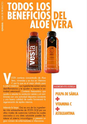 Imagen 1 de 4 de Bebida Sabor Mandarina Vesta By Kromasol Pulpa De Sávila