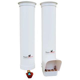 Gallo Real Alimentador De Gallinas Con Cubierta Para Lluv