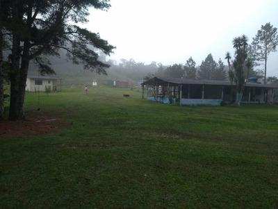 Lindo Sitio Plano/piscina/lago/campo Futebol/ref: 04682