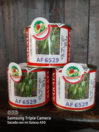 Pimienta Sakata Af 6529
