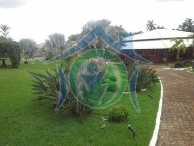 Fazenda A Venda Em Piracanjuba - 179