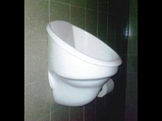 Mingitorio Seco Portátil Sin Gabinete Para Interiores.