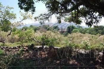 Terreno En Venta En Malinalco. 47-tv-78.