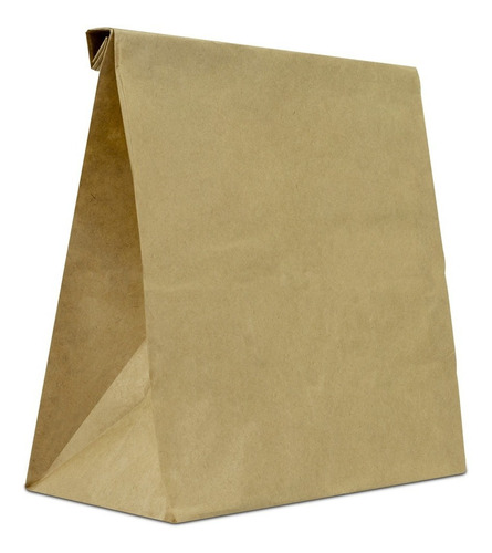 100 Sacos Tamanho Pequeno Para Entregas Presentes Compras