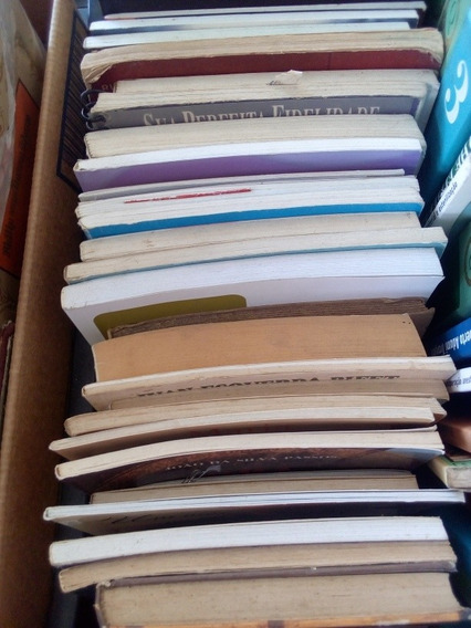 Lote Com 20 Livros Diversos Estilos Frete Grátis