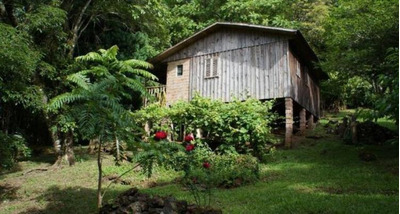 Sítio Com 3 Dormitórios À Venda, 30000 M² Por R$ 133.000 - Zona Rural - Canela/rs - Si0083