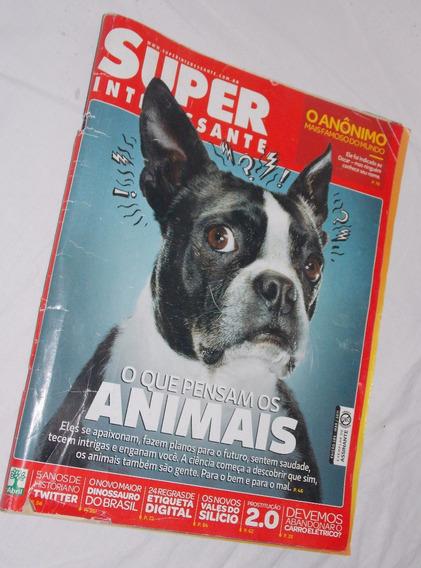 Revista Superinteressante Edição 289 O Que Pensam Os Animais