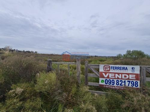 Vende Chacra De 5,6 Hectáreas - 50 Km. De Montevideo