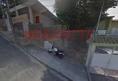 Terreno Em Limão - São Paulo, Sp - 275843