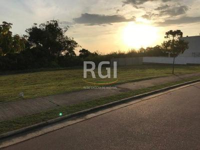 Terreno Em Vila Nova - Lp953