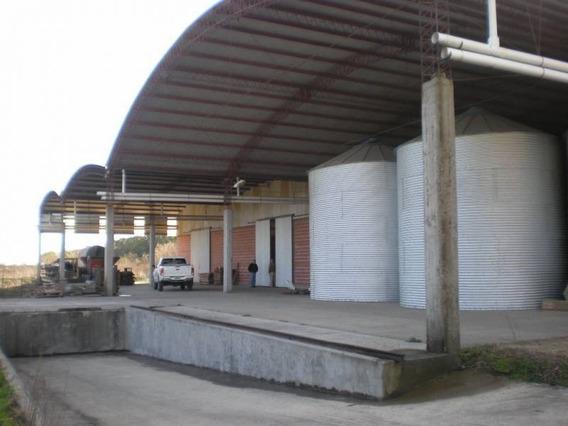 Galpones, Depósitos O Edificios Ind. Venta Gualeguaychú