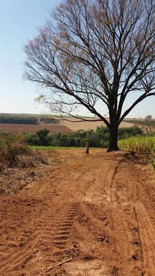 Sitio - 3 Quartos - Rural - 5293