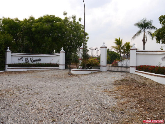 Terrenos Hacienda Negocio En Venta En Yaritagua #20-4111