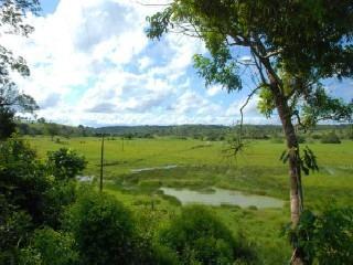 Fazenda Rural Em Cardeal Da Silva - Ba, Centro - Fa00003