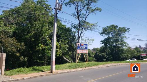 Imagem 1 de 4 de Terreno Para Alugar Na Vila Estrela - 1090-l