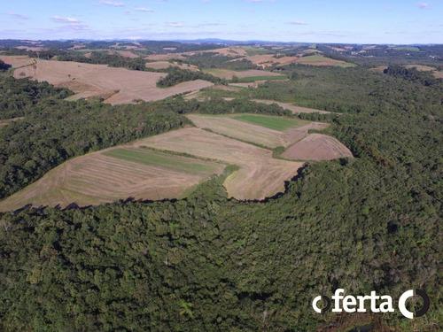 Imagem 1 de 15 de Chacara - Rio Do Poco - Ref: 513 - V-513