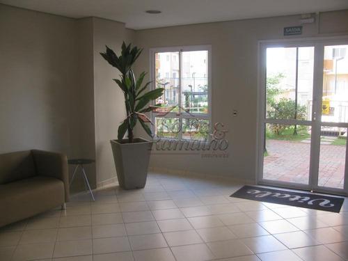 Apartamentos - Ref: V11431