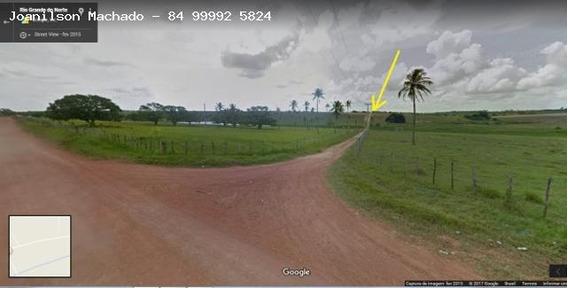 Chácara Para Venda Em Parnamirim, Estrada De Japecanga - Sitio Jardim, 3 Dormitórios, 2 Suítes, 3 Banheiros, 20 Vagas - Cha0648