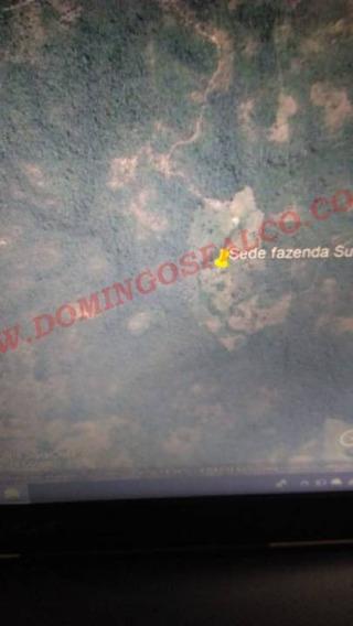 Venda - Fazenda - Zona Rural - Santa Maria Do Tocantins - To - D8323