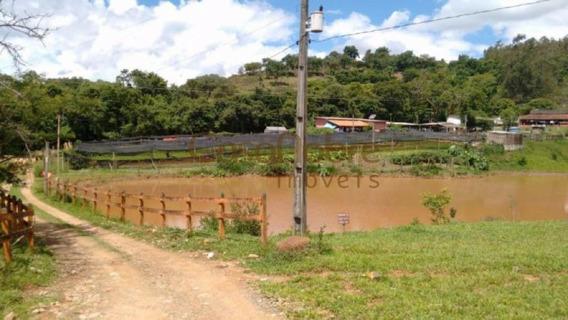 Sítio Centro São Sebastião Do Paraíso Mg - 65