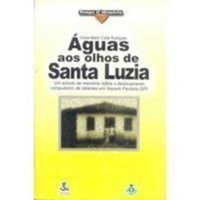 Águas Aos Olhos De Santa Luzia Cintya Maria Costa Rodrigues