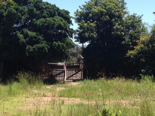 Terreno Em Cavalhada - El50876747
