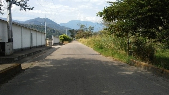 Finca Agricola Via La Petrolea