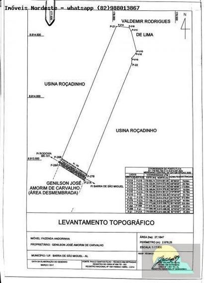 Área Para Venda Em Barra De São Miguel, Centro - Ar-03