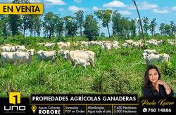 Propiedad Agricola Ganadera En Venta