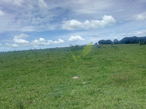 Fazenda Em Bragança Paulista 23 Alqueires R$6 Milhões - 826