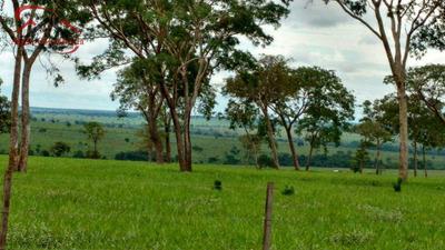 Fazenda, Área Rural De Três Lagoas, Três Lagoas - R$ 39.150.000,00, 0m² - Codigo: 361 - V361