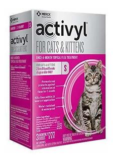 Activilo Para Gatos Y Gatitos