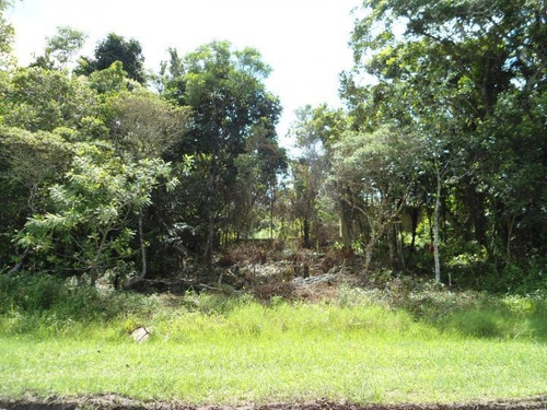 Terreno Para Venda Em Peruíbe, Perola Negra - 0220_2-213189