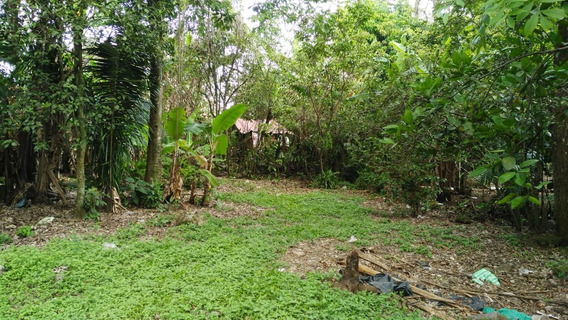 Terreno En Cordoba Veracruz ,450m2 ,todo En Regla